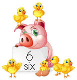 Counting number six with pig and chicks Stock Image