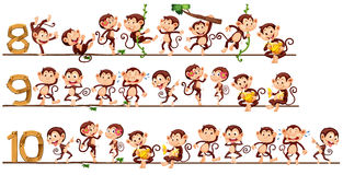 Counting numbers with monkeys. Illustration Stock Photos