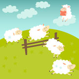 Counting sheep. Cartoon happy sheep for baby. Cartoon character sheep on meadow Royalty Free Stock Photo