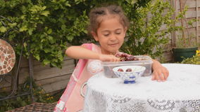 Counting and spilling cherries stock footage