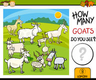 Counting task with goats cartoon Stock Photography