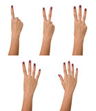 Counting woman hand. Isolated on white background Stock Images