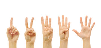 Counting woman hands (1 to 5). Isolated on white background Stock Photo
