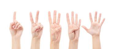 Counting woman hands (1 to 5). Isolated on white background Royalty Free Stock Photography