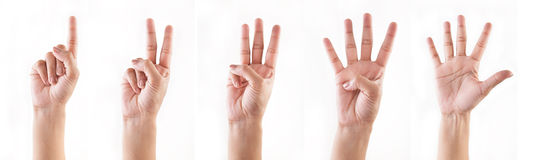 Counting hands (1 , 2, 3, 4, 5) Stock Photos
