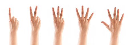 Counting hands (1 , 2, 3, 4, 5) Stock Photography