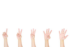 Counting woman hands sign isolated on white background Stock Images