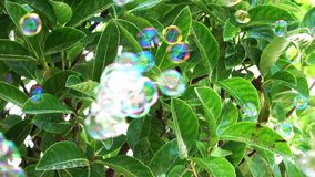 Countless bubbles being blown against the leaves background. Flying rapidly in different directions stock video footage