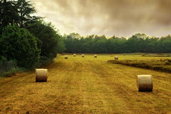 Country Stock Photography