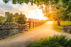 Country alley. Scenic alley in Kentucky countryside in summer Royalty Free Stock Photography