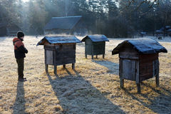 Country apiary in early spring Royalty Free Stock Image