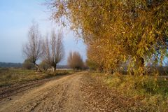 Country, autumn road Stock Images