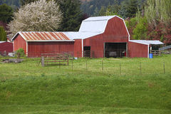 Country barn. Royalty Free Stock Photo