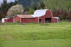 Country barn. Stock Photos