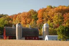 Country Barn with Autumn Backdrop Stock Images