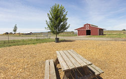 The country barn and picnic bench. Country barn picnic table and yard in a countryside Royalty Free Stock Photos