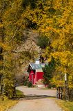 Country Barn and Rural Road in Autumn royalty free stock photos