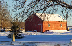 Country barn winter afternoon. Snow covered country barn in late winter afternoon sunlight Royalty Free Stock Images