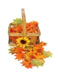 Country basket of fall leaves Stock Photography