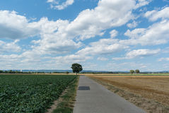 Country Bike Path Stock Photo