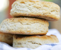 Country Biscuits Royalty Free Stock Photo