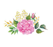 Country bouquet of pink rose on the white background. Watercolor with summer garden flowers. Country bouquet of pink rose on the white background. Watercolor Stock Illustration
