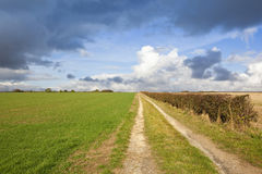 Country bridleway Stock Photos