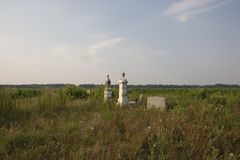Country Cemetary. Along Paradise Road in Dillion South, Carolina lies an old family cemetary half hidden in a vast field of corn and cotton Royalty Free Stock Photography