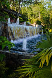 Country Club Waterfall. A Palm tree enshrouded waterfall on Long Island, NY Stock Image