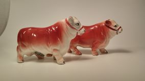 Country cow and bull salt and pepper shakers Royalty Free Stock Photos