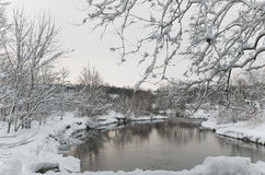 Country creek in winter Stock Photography