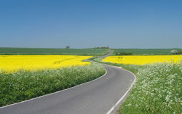 Country cross-roads Royalty Free Stock Images