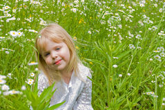 little girl in wild daisy meadow Stock Images