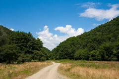 Country dirt road. On a sunny summer day royalty free stock image
