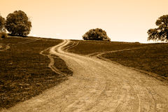 Country dirt road Royalty Free Stock Images