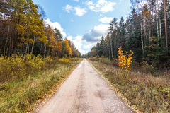 Country dirt road during autumn. Country dirt road during autumn with big puffy clouds Royalty Free Stock Image