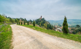 Country dirt road bordered by cypress trees. Next to the clock tower of the village of Brisighella in Italy Royalty Free Stock Photography