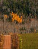 Country Dirt Road Fall Colors Hill stock image