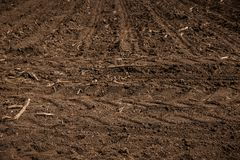 Unworked land, field with wheel tracks in spring. Dirt texture. Country dirt field texture. royalty free stock photography