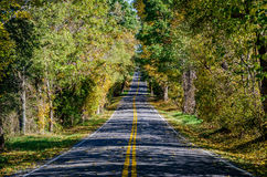 Country Drive Stock Photography