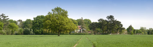 Country estate Royalty Free Stock Photography