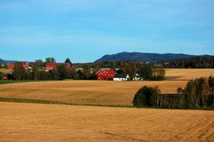 Country in Fall Royalty Free Stock Photo