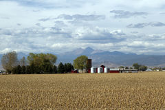 Country Farm along the mountain range. A farm sits in a harvested field with Long's Peak and the front range in the background royalty free stock photos