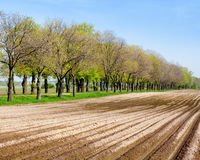 Country farm landscape - plowed field and trees Royalty Free Stock Photos