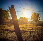 Country Farm Sunrise. Limestone County Alabama Royalty Free Stock Photo