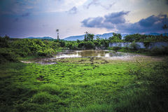 Country farm in Thailand wallpaper Royalty Free Stock Photography