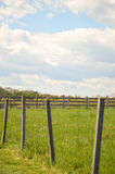 Country Fence and Blue Skies. Stock Image