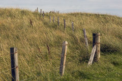 Country Fence. In Elie Beach, fife, Scotland Stock Image