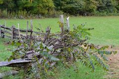 Country Fence made from sheared logs. Old log fence around some property in the hills royalty free stock images