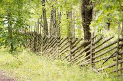 Country fence in perspective. It is covered in lichen and surrounded by trees Stock Photos